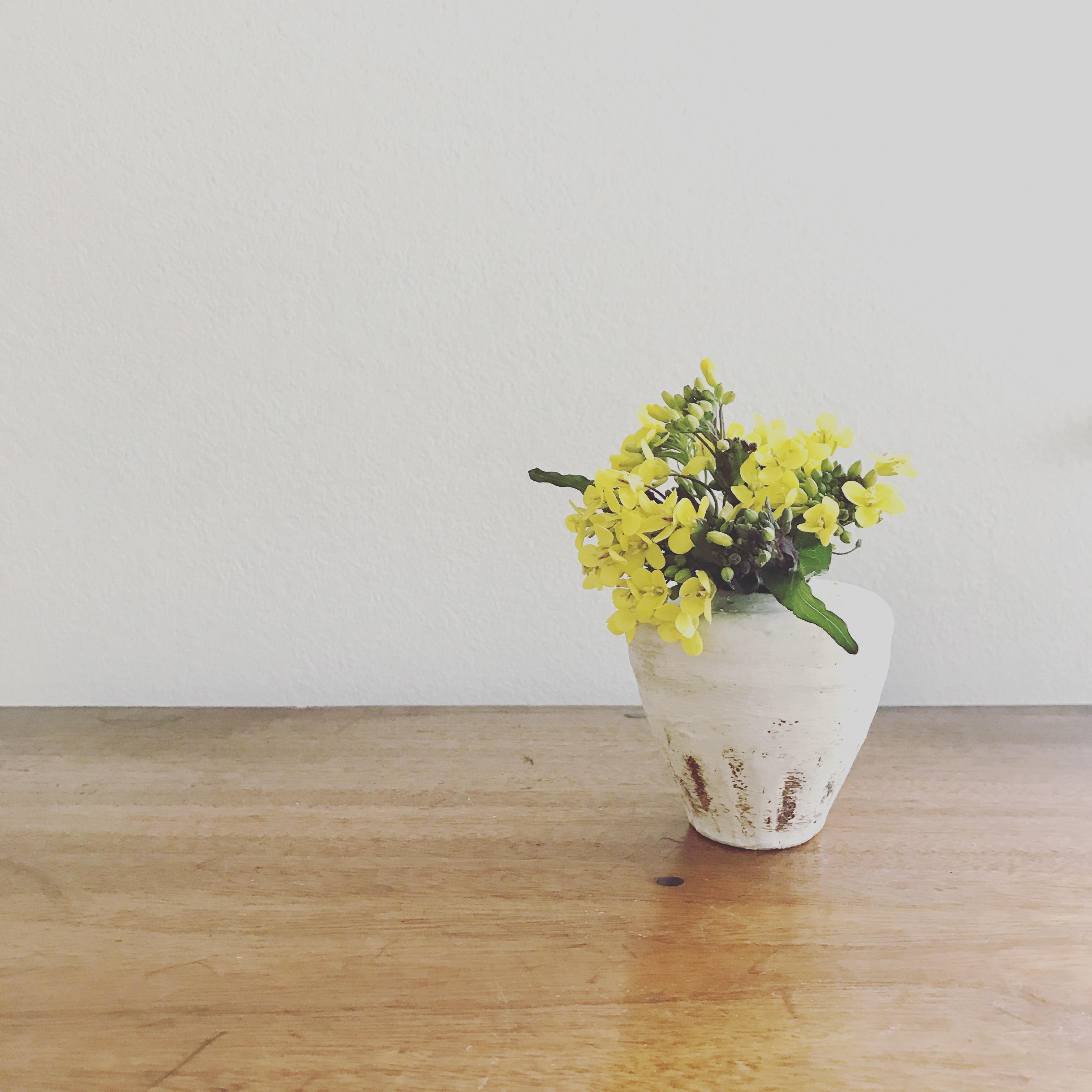holo holo Flower & Gift